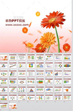 工作汇报数据分析植物背景ppt模板