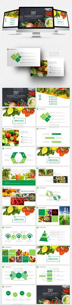 健康农业招商农产品介绍宣传ppt模板