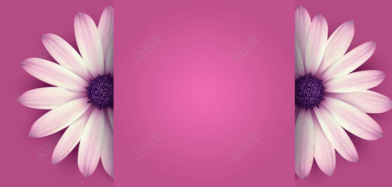 简约鲜花花卉banner背景素材