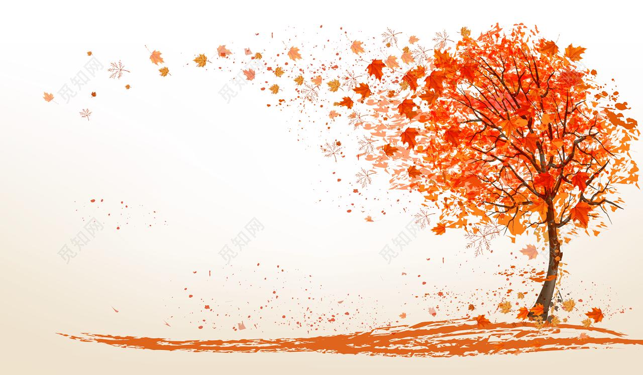 红色落叶树背景图免费下载_png素材_觅知网