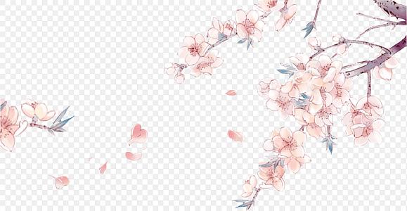 中國風水彩手繪花鳥素材古風