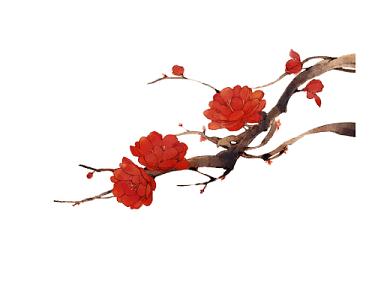 白露寒露24節氣中國風手繪梅花花奔素材