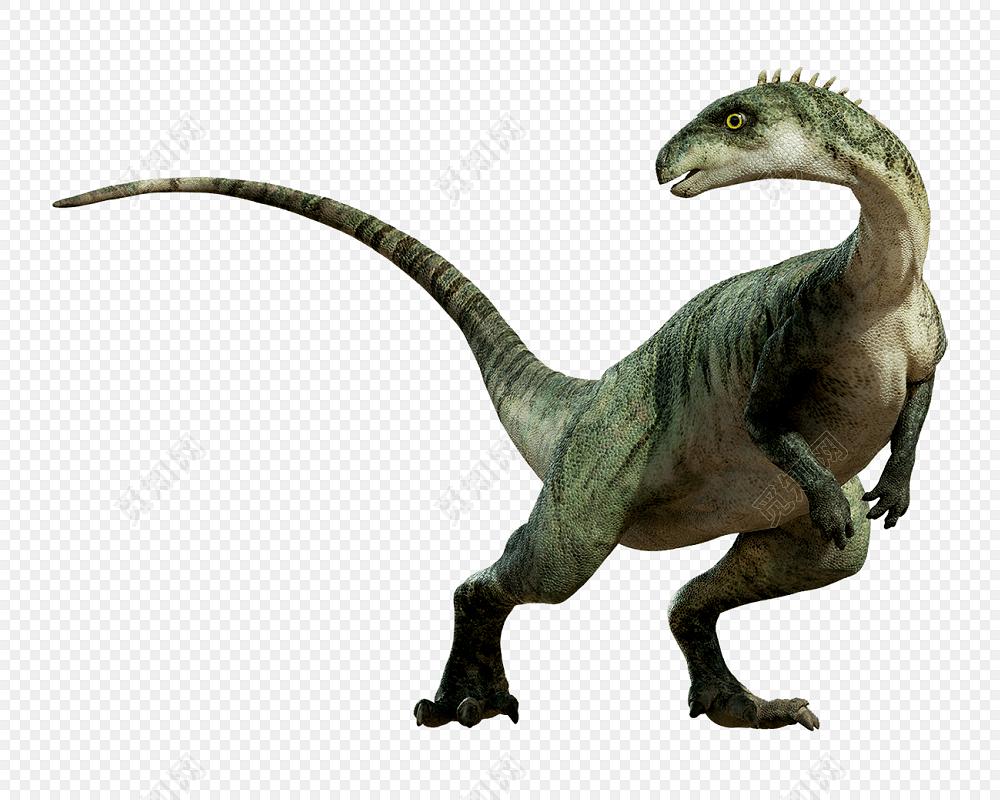 高清免抠彩色恐龙素材