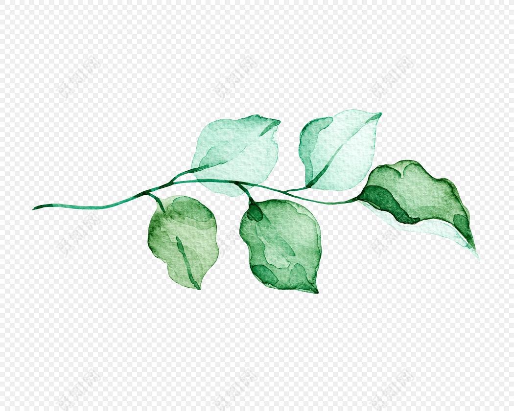 彩墨水彩手绘树叶素材