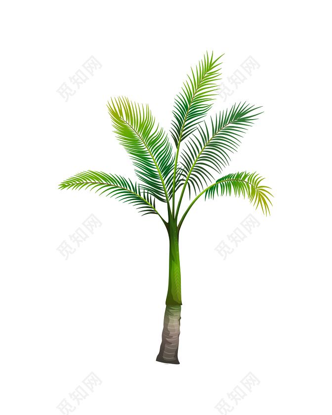 手绘椰子树素材win10装不了机械v素材手册图片