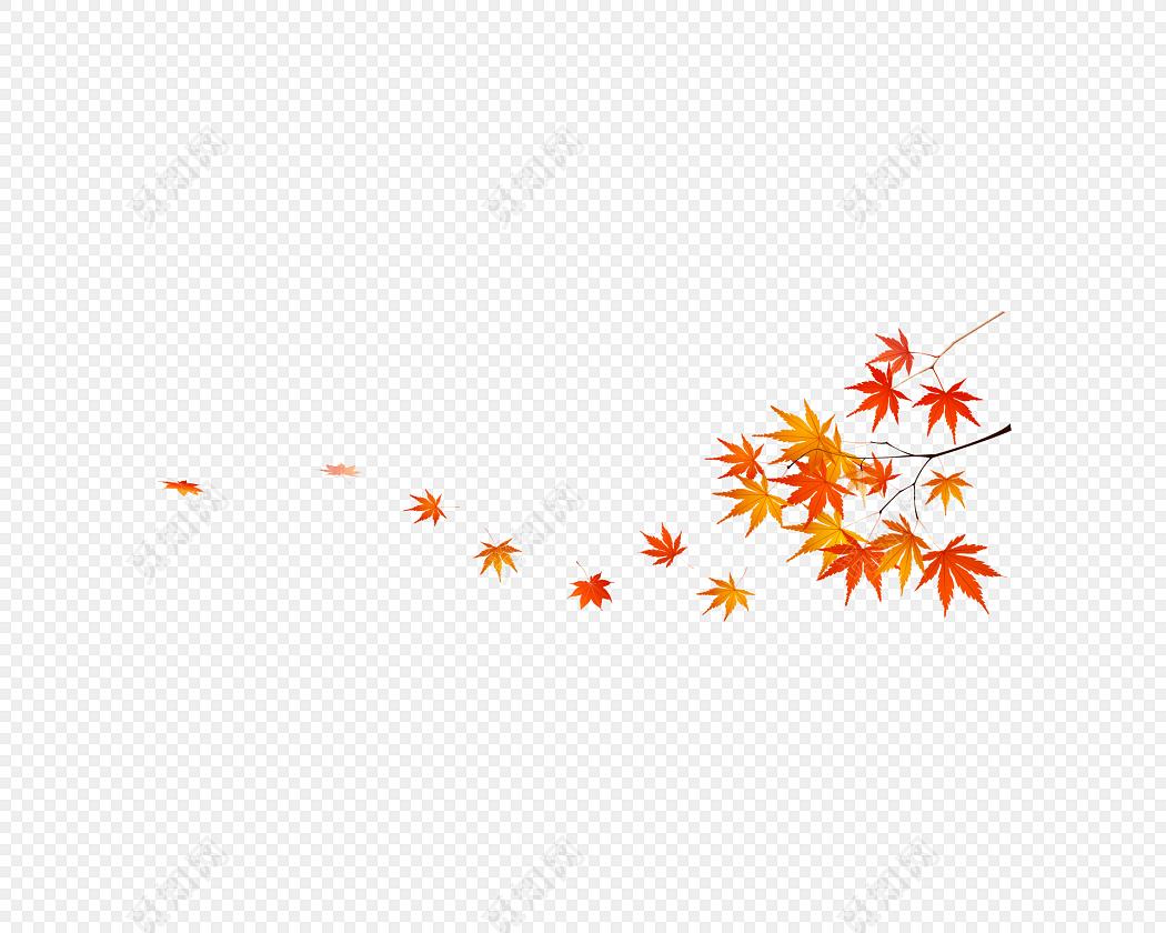 卡通手绘秋天枫叶树叶