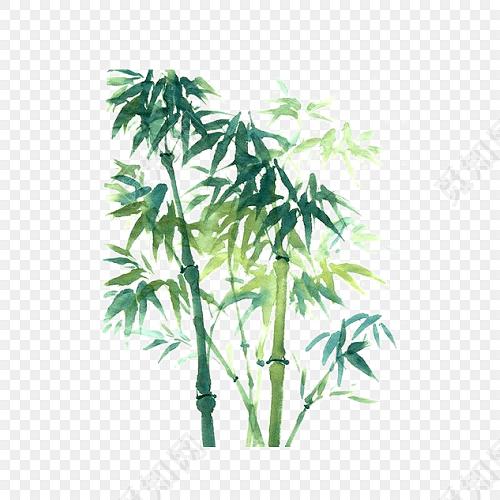 素材绿色简约小清新水彩竹子免抠素材标签:竹子 免抠素材 卡通 手绘