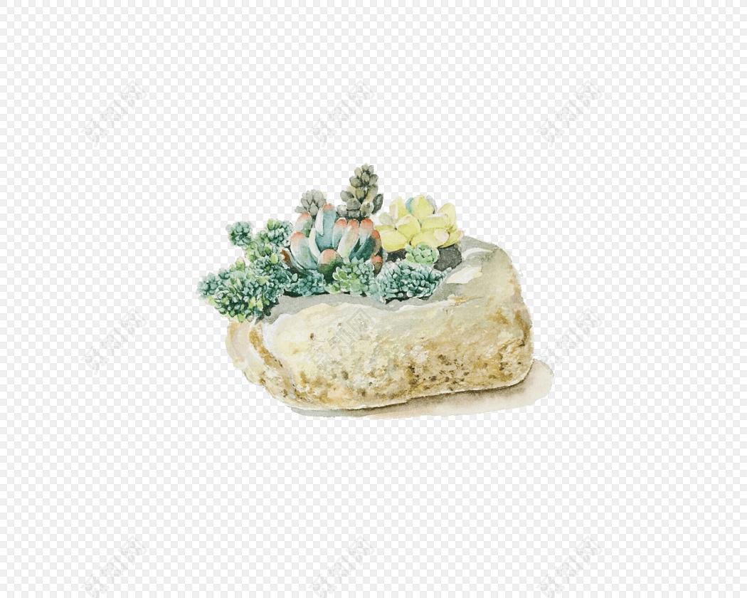手绘植物石头素材