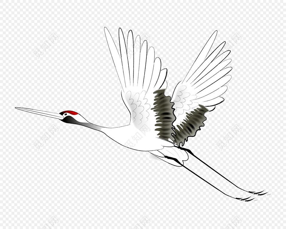 古风手绘丹顶鹤设计素材