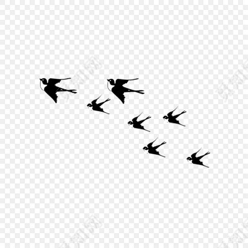 手绘黑白燕子设计素材