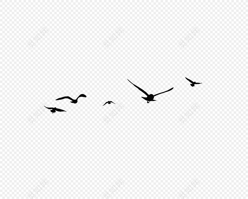 黑色海鸥鸟剪影设计素材