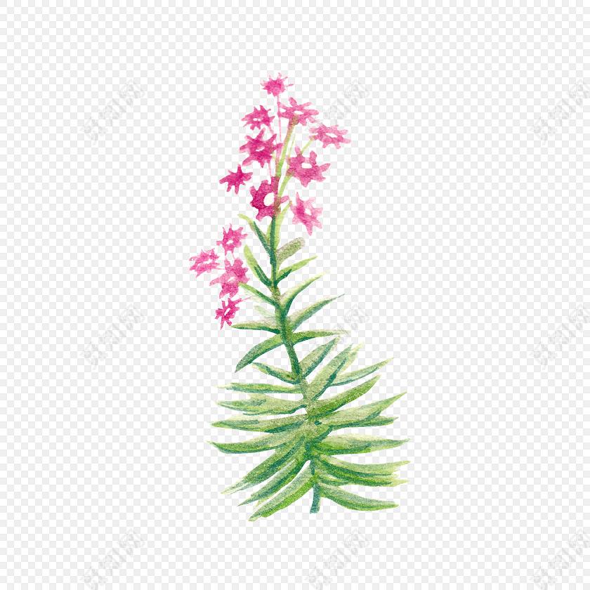 可爱手绘粉色小花素材