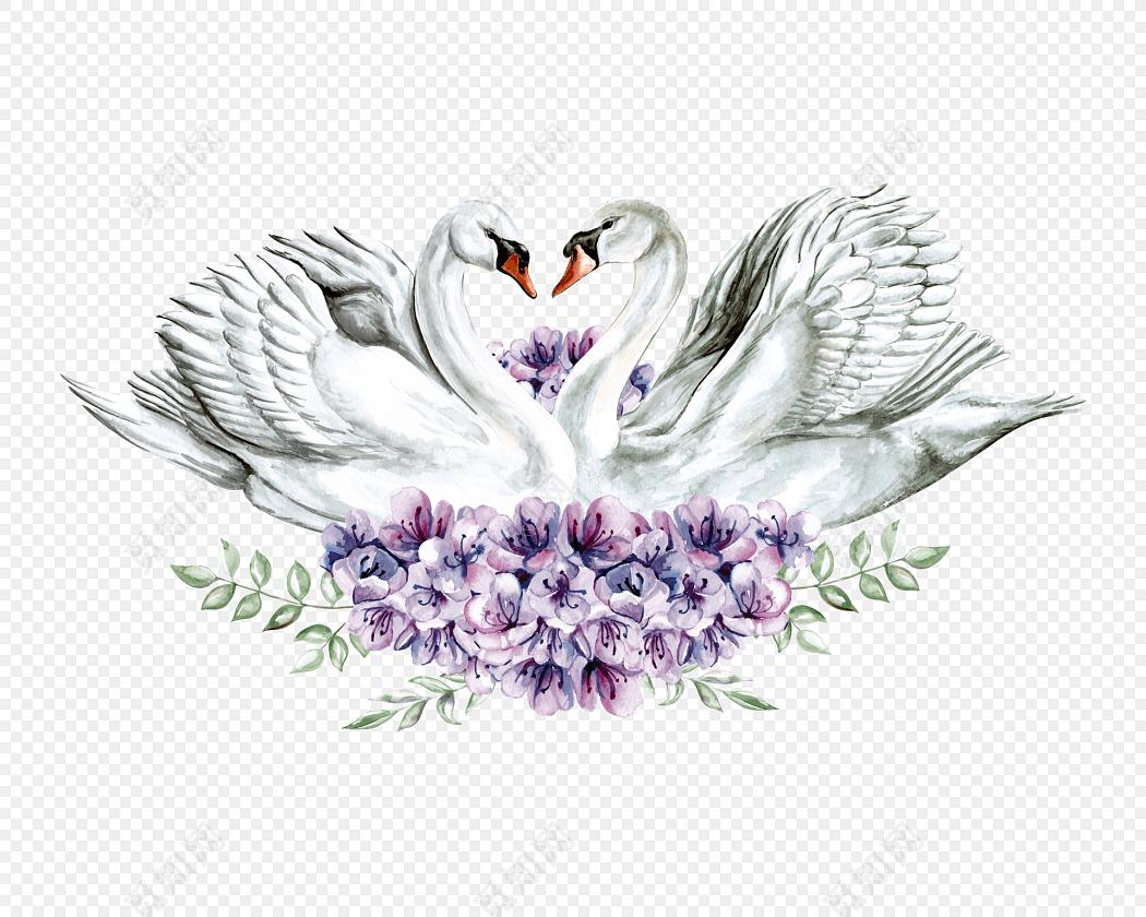 手绘水彩天鹅花朵素材