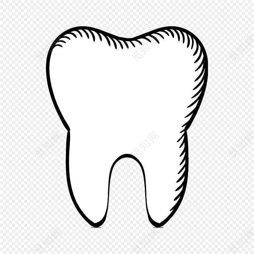 不同动物牙齿简笔画
