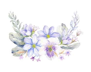 紫色小花素材