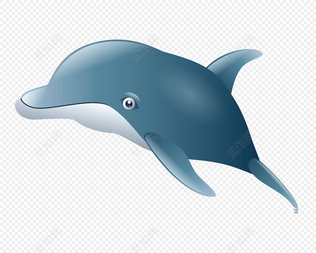 手绘海豚遨游图片