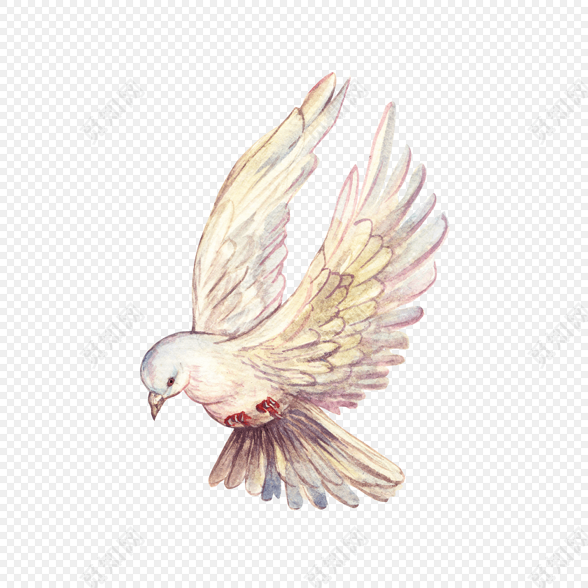 手绘小鸟动物素材
