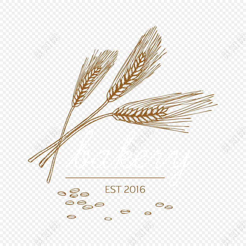 彩色手绘小麦插画素材