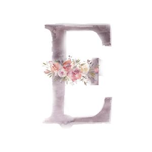 水彩畫字母E裝飾花朵素材