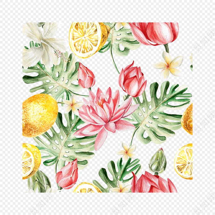 花叶水果彩绘背景素材免费下载_png素材_觅知网