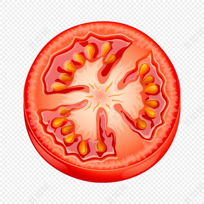 西红柿矢量图