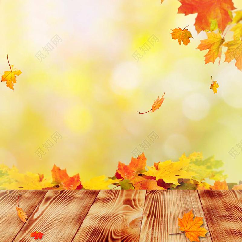 黄色秋天落叶小清新主图背景素材