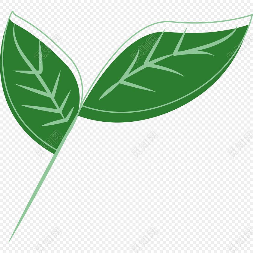 唯美小清新两片绿叶免抠素材