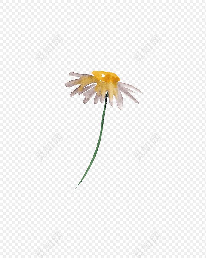 小清新水彩花朵手绘