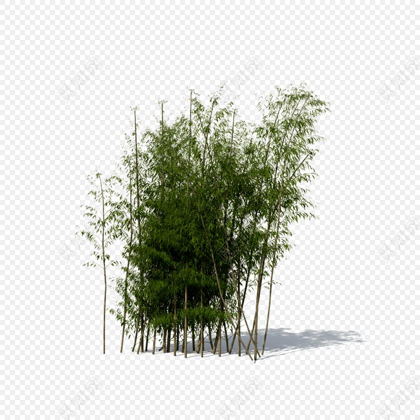 一片竹林素材免费下载_png素材_觅知网