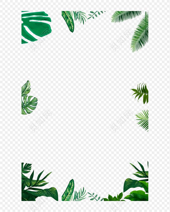 卡通手绘清新植物叶子边框素材