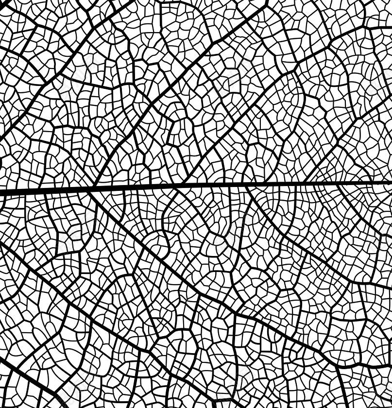 创意黑白矢量树叶图案纹理底纹素材