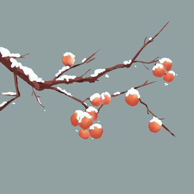 立冬冬至大雪小雪柿子美食素材