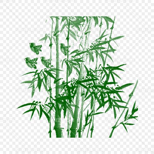 竹子竹林矢量图像图形