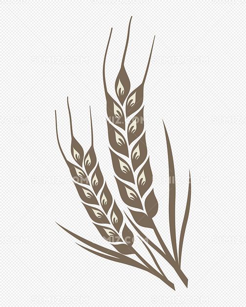 手绘麦穗农作物矢量图