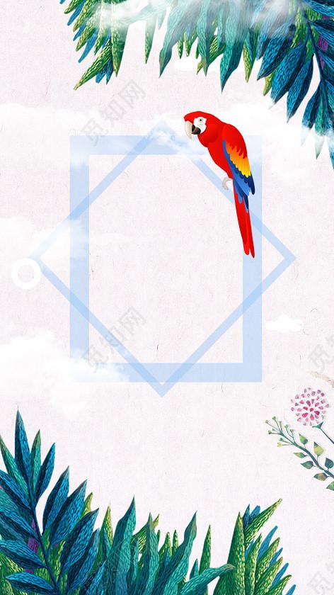 手绘简约小清新风格鹦鹉ins风特卖会海报背景素材