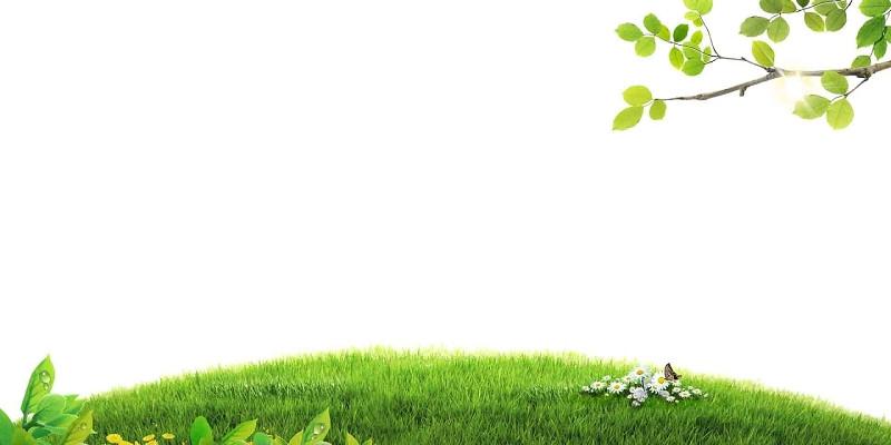 草地世界地球日衛生日春天草坪背景素材