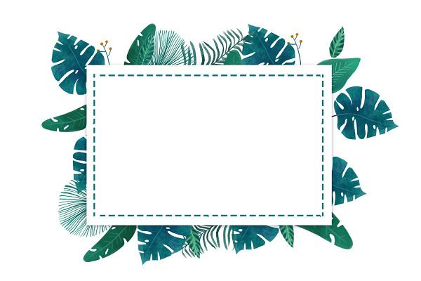 夏天夏季綠色熱帶植物葉子小邊框素材