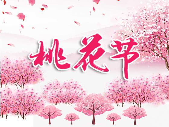 桃花节 · 海报模板