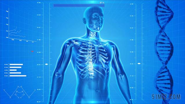 三维人体模型_蓝色医疗高科技三维人体图医学医疗科技背景图片免费下载_觅知网