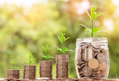 金融商務陽光照射下萌芽的硬幣春天成長圖片