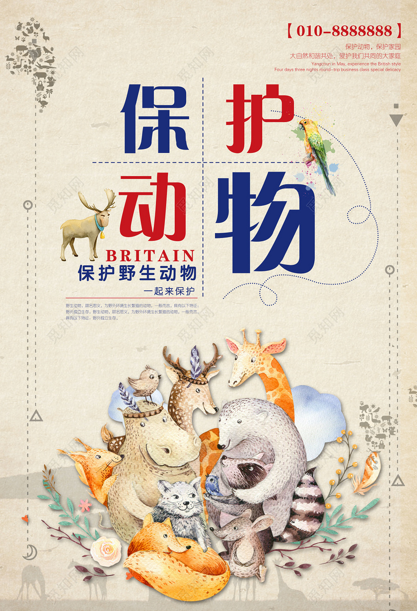 保护野生动物保护家园卡通动物世界动物园海报