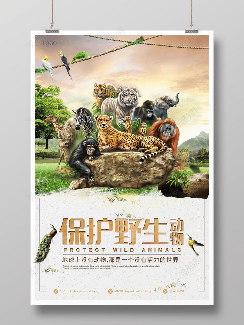 保护野生动物保护地球动物世界动物园海报
