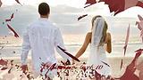 浪漫婚礼开场AE片头模板