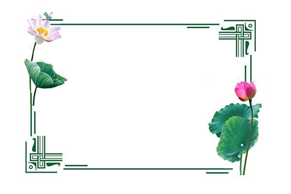 夏天夏至立夏中國風荷花荷葉花朵綠色邊框素材