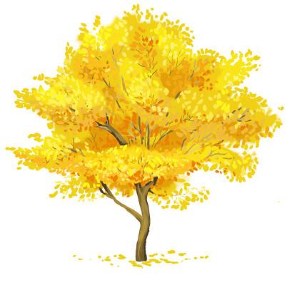 卡通手繪水彩秋天樹素材