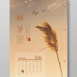 黃色蘆葦攝影二十四節氣秋分海報
